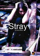 Workbook for Stray by David Belbin
